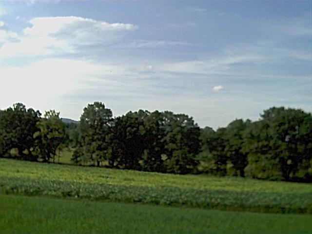 Milan Pa Farm